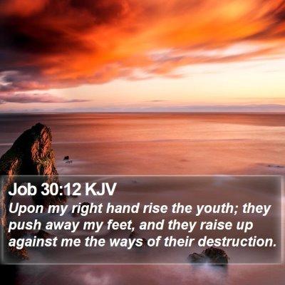 Job 30:12 KJV Bible Verse Image