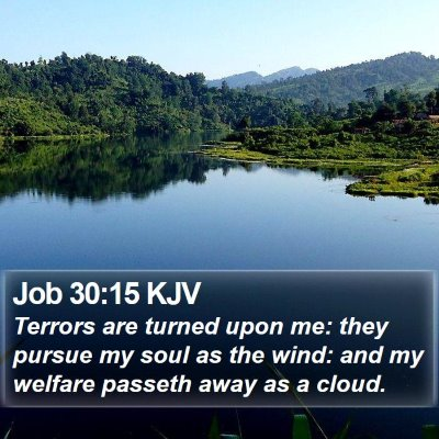 Job 30:15 KJV Bible Verse Image
