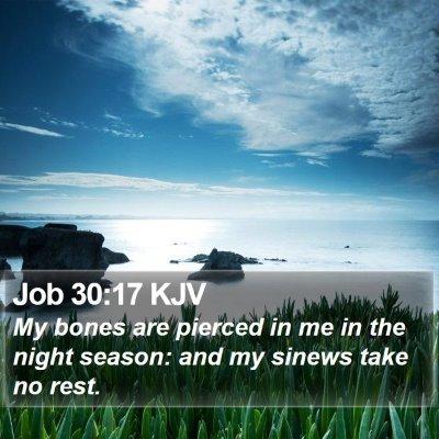 Job 30:17 KJV Bible Verse Image