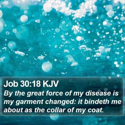 Job 30:18 KJV Bible Verse Image