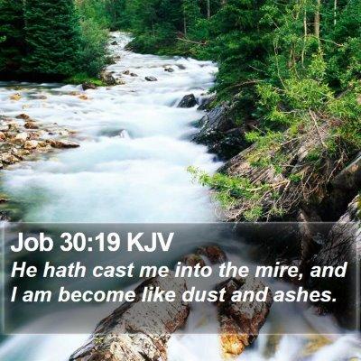 Job 30:19 KJV Bible Verse Image