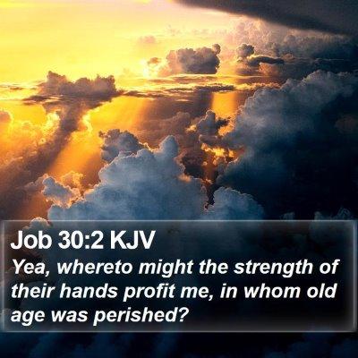 Job 30:2 KJV Bible Verse Image