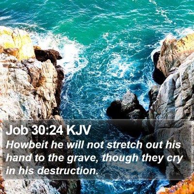 Job 30:24 KJV Bible Verse Image