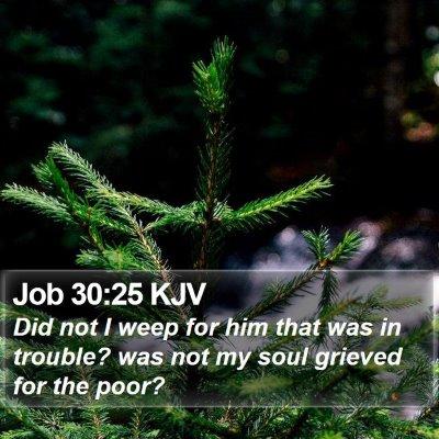 Job 30:25 KJV Bible Verse Image