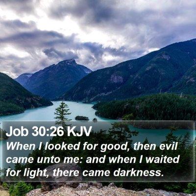Job 30:26 KJV Bible Verse Image