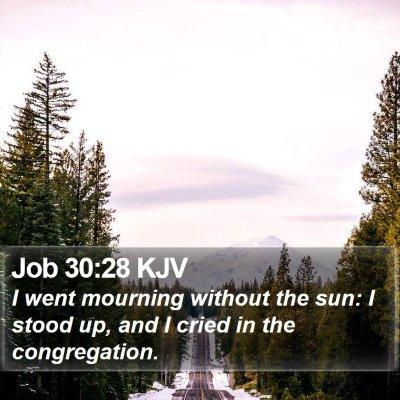 Job 30:28 KJV Bible Verse Image