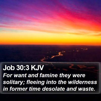 Job 30:3 KJV Bible Verse Image