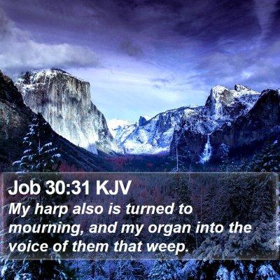 Job 30:31 KJV Bible Verse Image