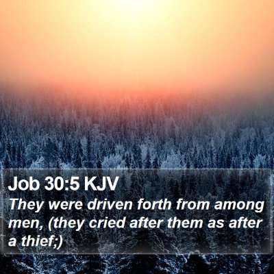 Job 30:5 KJV Bible Verse Image