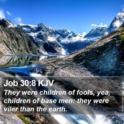 Job 30:8 KJV Bible Verse Image