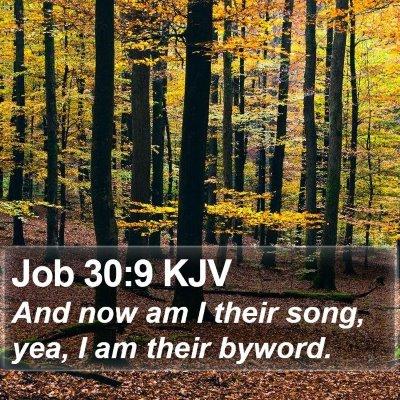 Job 30:9 KJV Bible Verse Image