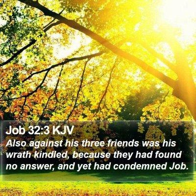 Job 32:3 KJV Bible Verse Image