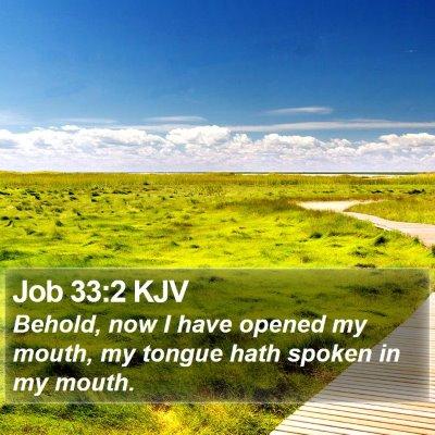 Job 33:2 KJV Bible Verse Image