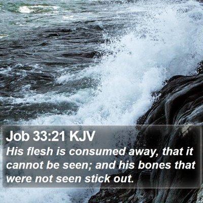 Job 33:21 KJV Bible Verse Image