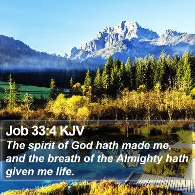 Job 33:4 KJV Bible Verse Image