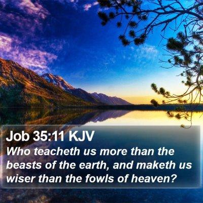 Job 35:11 KJV Bible Verse Image