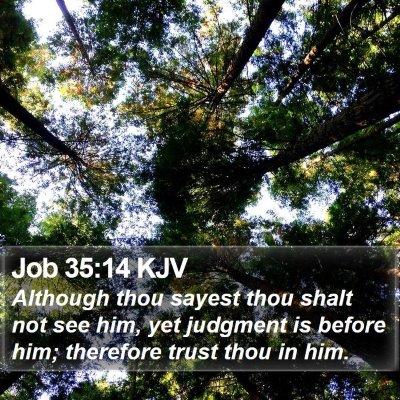 Job 35:14 KJV Bible Verse Image