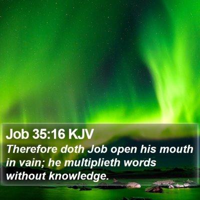 Job 35:16 KJV Bible Verse Image