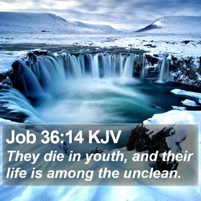 Job 36:14 KJV Bible Verse Image