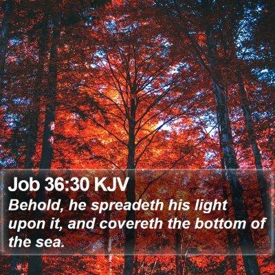 Job 36:30 KJV Bible Verse Image