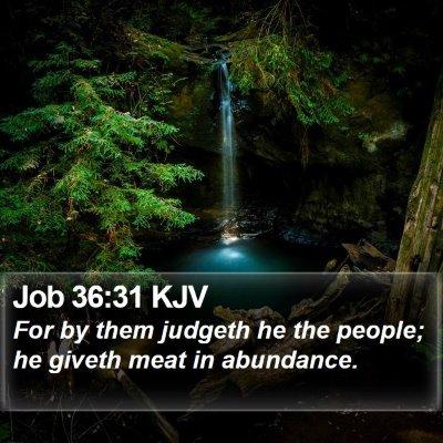 Job 36:31 KJV Bible Verse Image