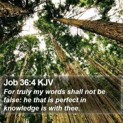 Job 36:4 KJV Bible Verse Image