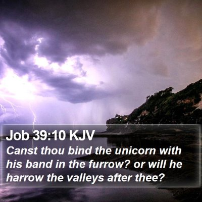 Job 39:10 KJV Bible Verse Image