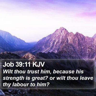 Job 39:11 KJV Bible Verse Image