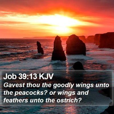 Job 39:13 KJV Bible Verse Image