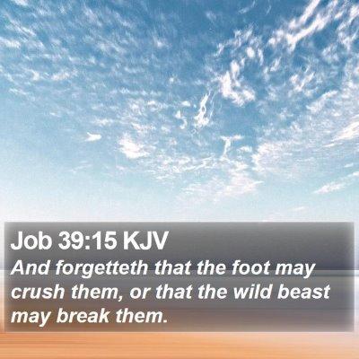 Job 39:15 KJV Bible Verse Image