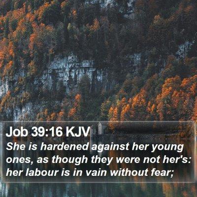 Job 39:16 KJV Bible Verse Image