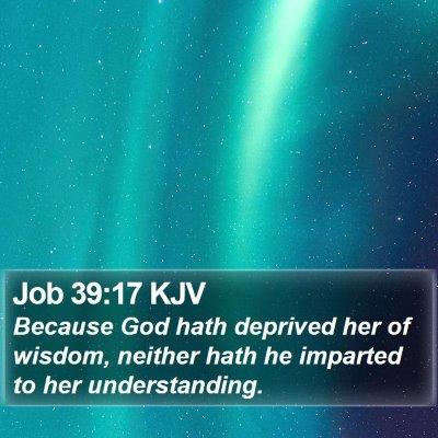 Job 39:17 KJV Bible Verse Image