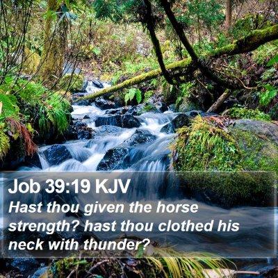 Job 39:19 KJV Bible Verse Image