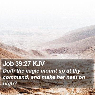 Job 39:27 KJV Bible Verse Image