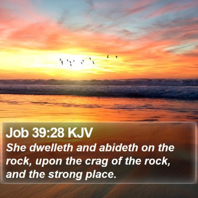 Job 39:28 KJV Bible Verse Image