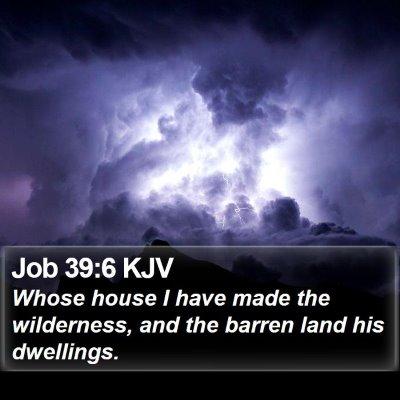 Job 39:6 KJV Bible Verse Image