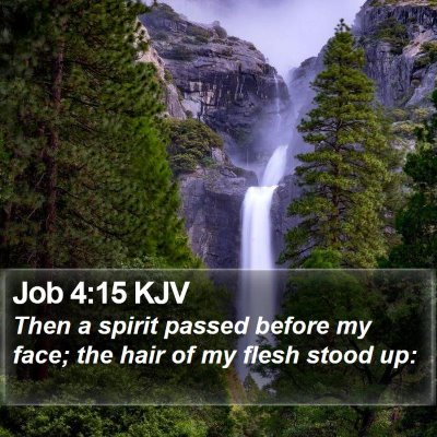 Job 4:15 KJV Bible Verse Image