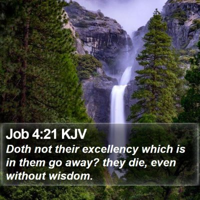Job 4:21 KJV Bible Verse Image