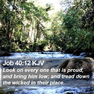 Job 40:12 KJV Bible Verse Image