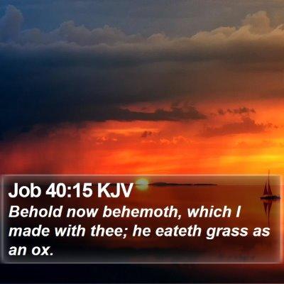 Job 40:15 KJV Bible Verse Image
