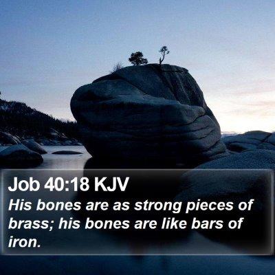 Job 40:18 KJV Bible Verse Image