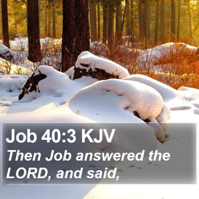 Job 40:3 KJV Bible Verse Image