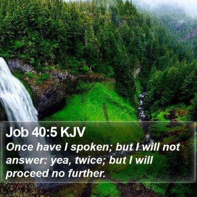 Job 40:5 KJV Bible Verse Image