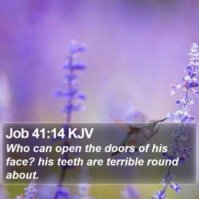 Job 41:14 KJV Bible Verse Image