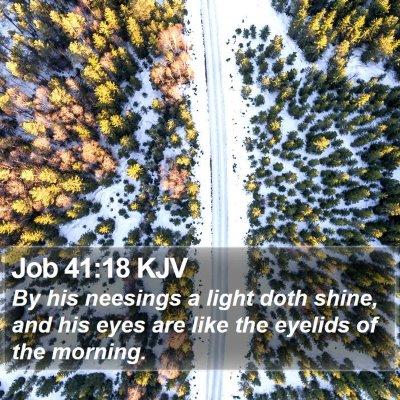 Job 41:18 KJV Bible Verse Image
