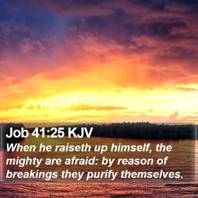 Job 41:25 KJV Bible Verse Image