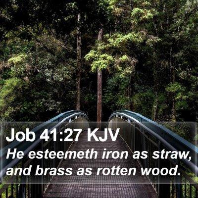 Job 41:27 KJV Bible Verse Image