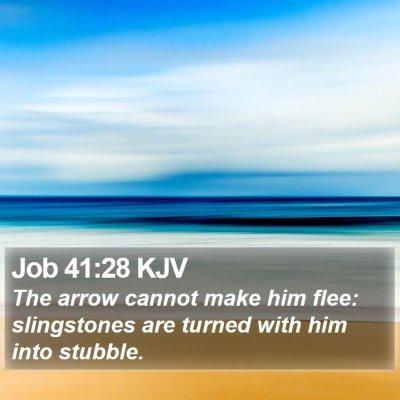 Job 41:28 KJV Bible Verse Image
