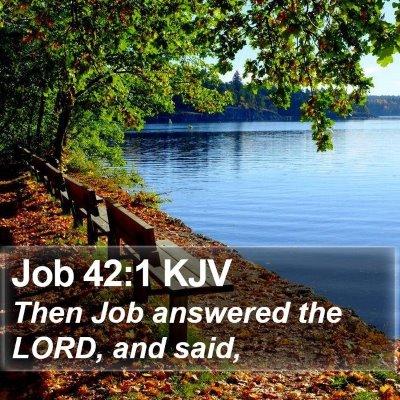 Job 42:1 KJV Bible Verse Image