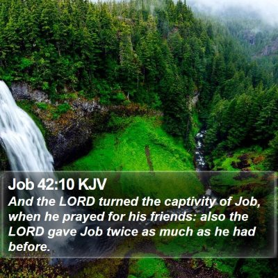 Job 42:10 KJV Bible Verse Image